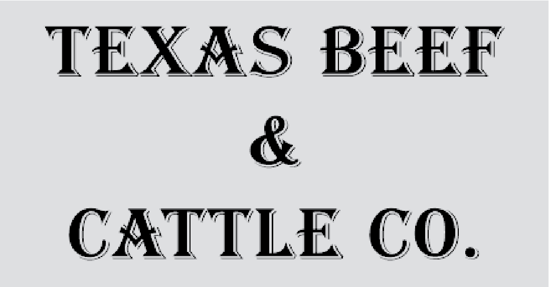 texas beef & cattle logo